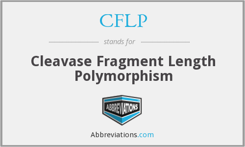 CFLP - Cleavase Fragment Length Polymorphism