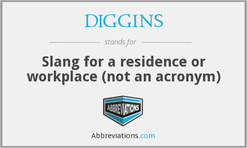 What does DIGGINS stand for?