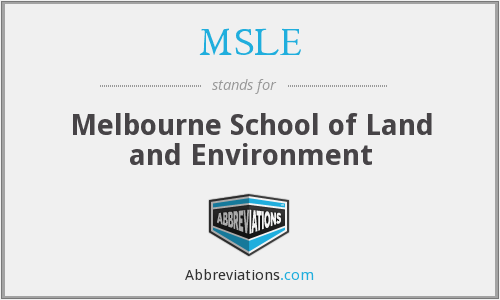 What does MSLE stand for?