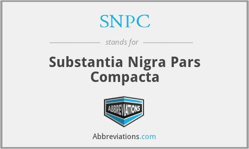 SNPC - Substantia Nigra Pars Compacta