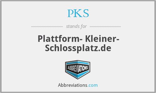 PKS - Plattform- Kleiner- Schlossplatz.de