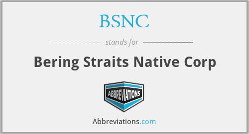 BSNC - Bering Straits Native Corp