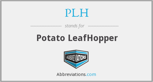 PLH - Potato LeafHopper