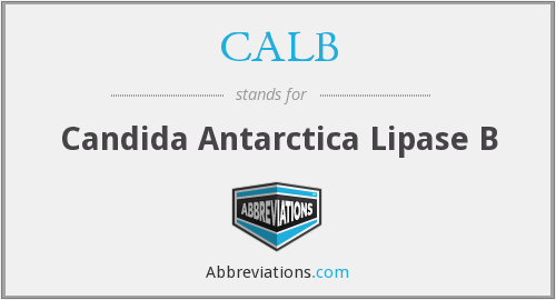 CALB - Candida Antarctica Lipase B