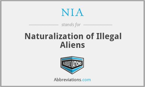 NIA - Naturalization of Illegal Aliens