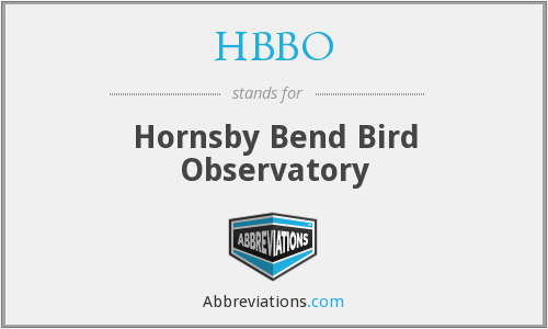 What does HBBO stand for?