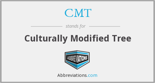 CMT - Culturally Modified Tree