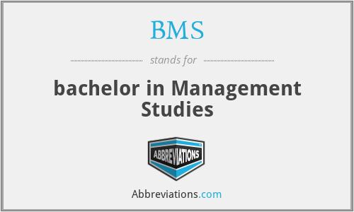 BMS - bachelor in Management Studies
