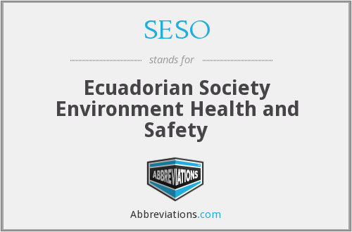 What does SESO stand for?
