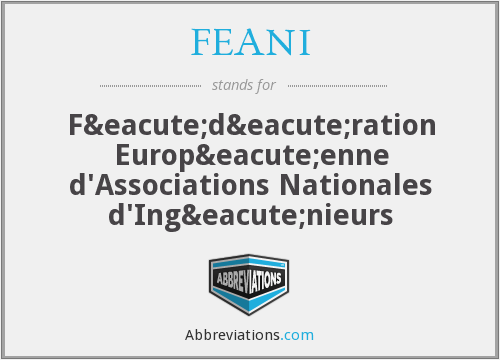 What does FEANI stand for?