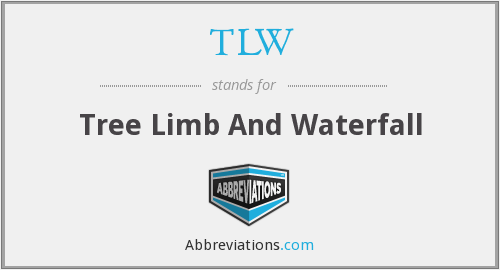 TLW - Tree Limb And Waterfall