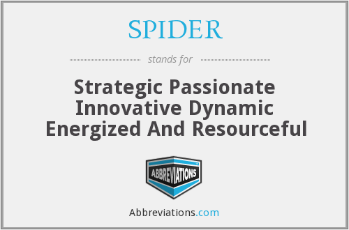 SPIDER - Strategic Passionate Innovative Dynamic Energized And Resourceful