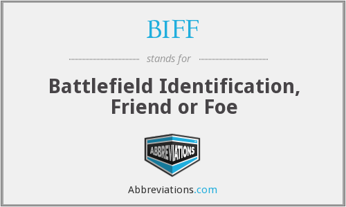 BIFF - Battlefield Identification, Friend or Foe