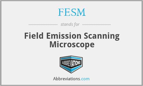 FESM - Field Emission Scanning Microscope