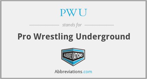 PWU - Pro Wrestling Underground