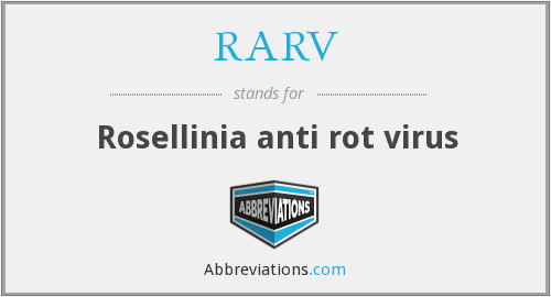 What does RARV stand for?