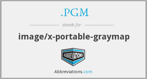 .PGM - image/x-portable-graymap