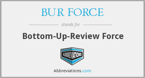 What does BUR FORCE stand for?