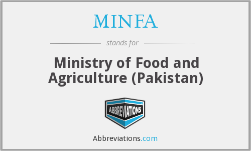 What does MINFA stand for?