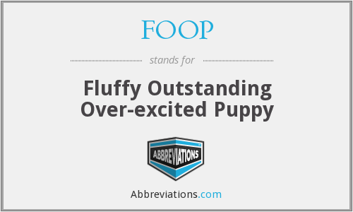 FOOP - Fluffy Outstanding Over-excited Puppy