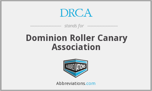 DRCA - Dominion Roller Canary Association