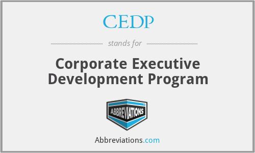 CEDP - Corporate Executive Development Program