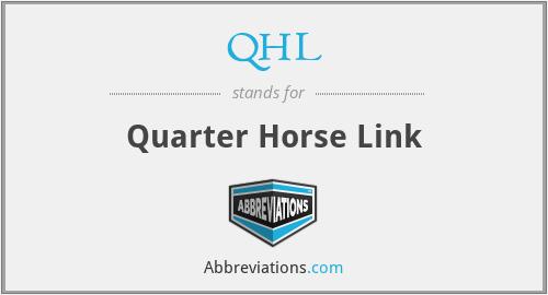 QHL - Quarter Horse Link