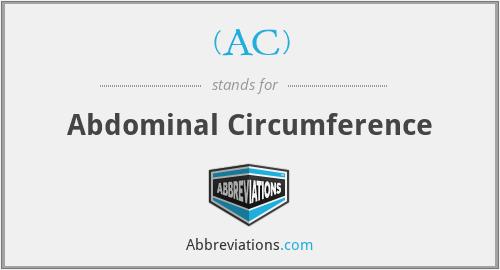 (AC) - abdominal circumference
