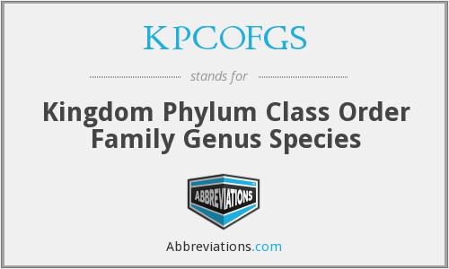 KPCOFGS - Kingdom Phylum Class Order Family Genus Species
