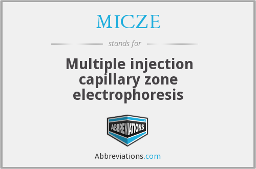 What does MICZE stand for?