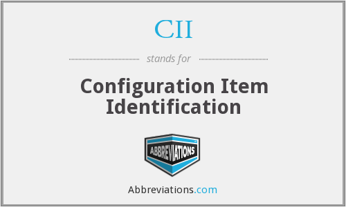 CII - Configuration Item Identification