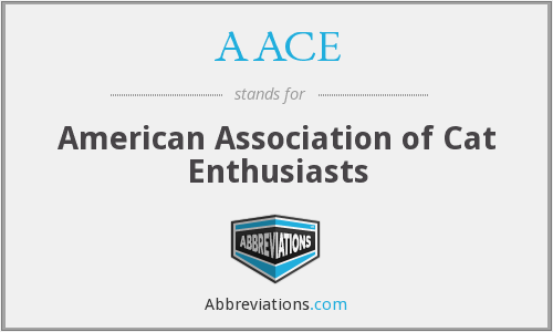 AACE - American Association of Cat Enthusiasts