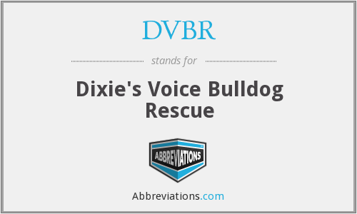 What does DVBR stand for?