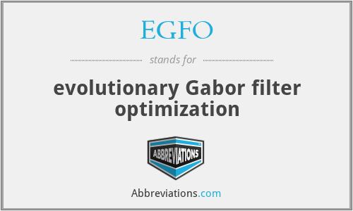 EGFO - evolutionary Gabor filter optimization