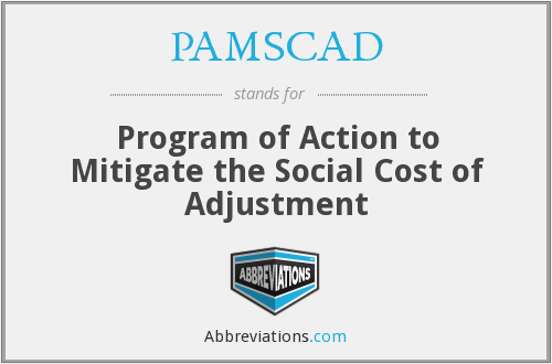What does PAMSCAD stand for?