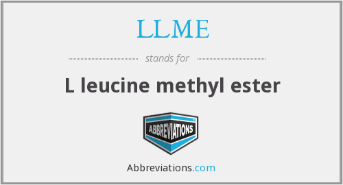 What does LLME stand for?