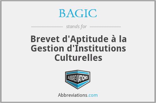 BAGIC - Brevet d'Aptitude à la Gestion d'Institutions Culturelles