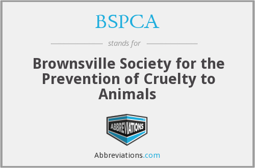 BSPCA - Brownsville Society for the Prevention of Cruelty to Animals