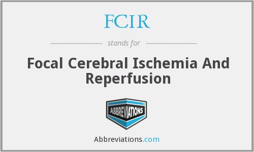 FCIR - Focal Cerebral Ischemia And Reperfusion