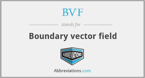 BVF - Boundary vector field