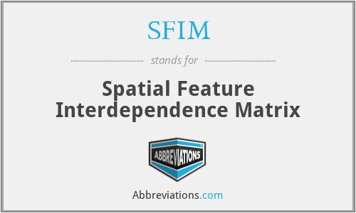 SFIM - Spatial Feature Interdependence Matrix