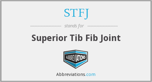STFJ - Superior Tib Fib Joint