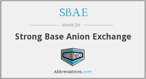 SBAE - Strong Base Anion Exchange