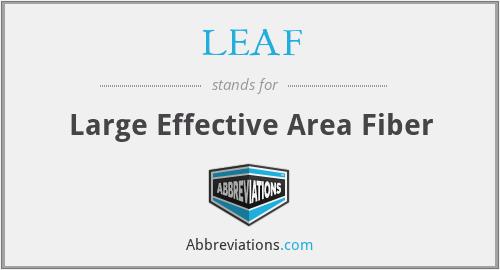 LEAF - Large Effective Area Fiber