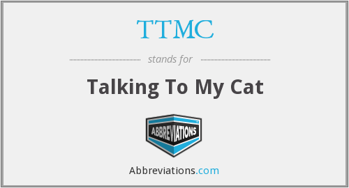 TTMC - Talking To My Cat