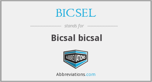 What does BICSEL stand for?