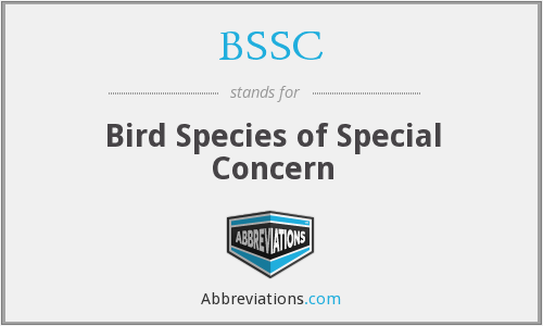 BSSC - Bird Species of Special Concern