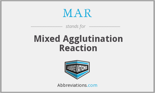 MAR - Mixed Agglutination Reaction