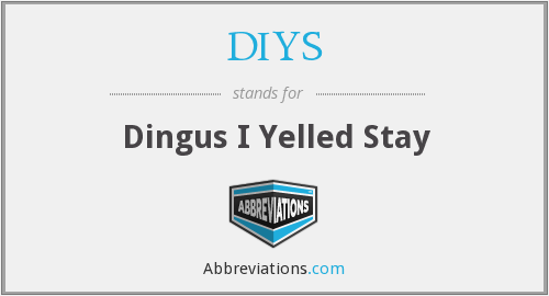 DIYS - Dingus I Yelled Stay