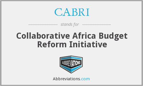 What does CABRI stand for?